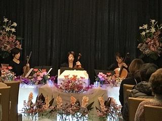 2017.3音楽葬.JPG